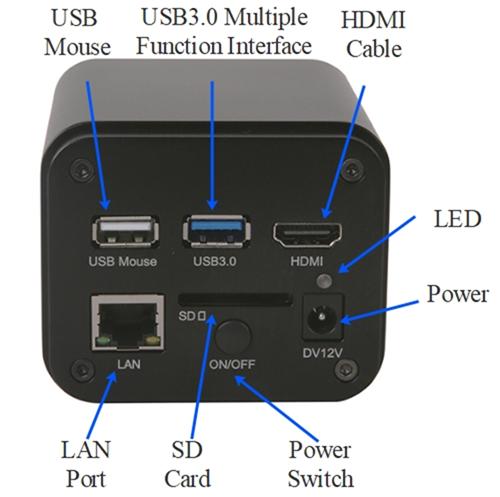 LC-31 Interface